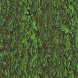 Seamless texture hanging down worn-out ripped rags cloth or paper. Seamless texture hanging down worn-out ripped rags green cloth or paper. Pattern of moss tree stock photos