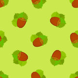 Seamless texture with hazelnuts. Bright summer theme. Stock Photos