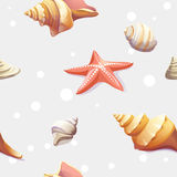 Seamless texture with the image of seashells Stock Image