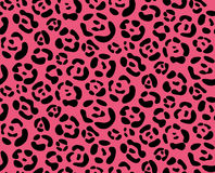 Seamless texture leopard pattern Royalty Free Stock Images