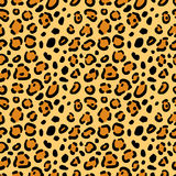 Seamless texture of leopard spots Stock Photos
