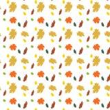 Seamless texture maple leaf Royalty Free Stock Photo