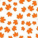 Seamless texture with maple leaves vector illustration