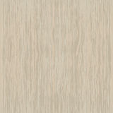 Seamless texture of maple Stock Images