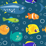 Seamless texture with marine fish and bubbles Stock Image