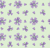 Seamless texture with meadow flower Stock Images