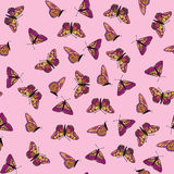 Seamless  texture with multicolor butterflies Stock Photos