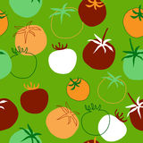 Seamless texture with multicolored tomatoes Royalty Free Stock Images