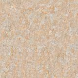 Seamless Texture Of Old Plastered Surface. Stock Photos