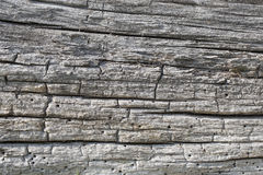 Seamless texture of old wood with cracks. Royalty Free Stock Images