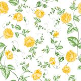 Seamless texture of orange roses for textiles Royalty Free Stock Photos