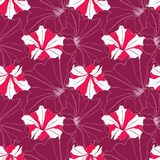 Seamless texture with outline flowers Royalty Free Stock Photography