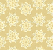 Seamless texture with outlined star flowers Royalty Free Stock Photo