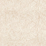 Seamless texture of paper Stock Image