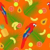 Seamless texture  parrot on orange background  vector Royalty Free Stock Photos