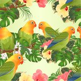 Seamless texture Parrots Agapornis lovebird tropical birds standing on a branch and Brugmansia with pink and yellow hibiscus vi stock illustration