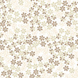 Seamless texture with pastel flowers Royalty Free Stock Image