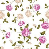 Seamless texture of pastel roses for textiles Stock Image