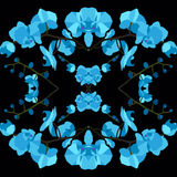 Seamless texture pattern with blue orchids. Seamless texture pattern with blue orchids on a black background Stock Photo