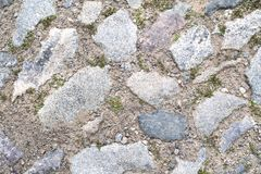 Seamless texture of a paving stone track on a green grass stock photo