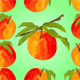 Seamless texture peach with leaves vector Stock Images