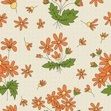 Seamless texture with pictures of flowers. Orange petals Stock Photos