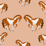 Seamless  texture piebald horse vector. Vector illustration Royalty Free Stock Photo