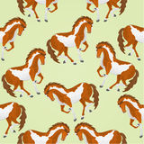 Seamless  texture piebald horses vector Stock Images