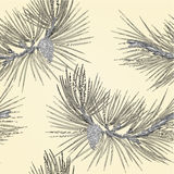 Seamless texture Pine branch and pine cone as vintage engraving vector Royalty Free Stock Photo