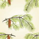 Seamless texture pine branch with pinecones  Vector Royalty Free Stock Image