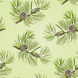Seamless texture pine tree branch with pine cones with snow vector Royalty Free Stock Photo