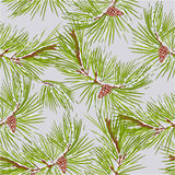 Seamless texture of pine tree vector. Seamless texture of pine tree with snow and pine cone  vector illustration Stock Photo