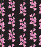 Seamless texture with pink bluebells Royalty Free Stock Images