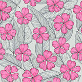 Seamless texture with pink flower Royalty Free Stock Images