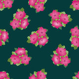 Seamless texture with pink flowers Royalty Free Stock Images