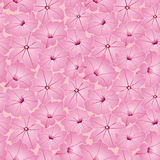 Seamless texture with pink lilac flowers Stock Photos