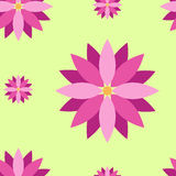 Seamless texture with purple flowers. And green background Stock Photos