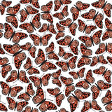 Seamless texture with red butterflies. Seamless vector pattern with multicolor butterflies on white background Stock Image