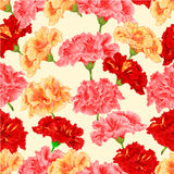Seamless texture red, pink, yellow hibiscus vector Stock Image