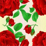 Seamless texture red Rose with buds and leaves vintage Festive background vector illustration editable. Hand draw Royalty Free Stock Photos