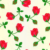 Seamless texture red Rosebud   stem with leaves and blossoms vintage vector illustration editable. Hand draw Stock Images