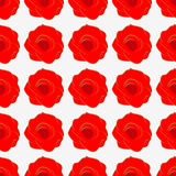 Seamless texture from red roses. Royalty Free Stock Image