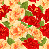 Seamless texture red and yellow hibiscus vector Royalty Free Stock Images