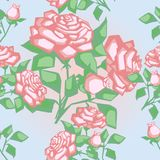 Seamless texture with roses Stock Photo