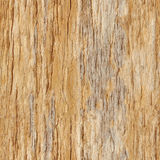 Seamless texture - rotting wood pattern. Seamless texture - rotting wood square pattern Royalty Free Stock Photography