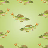 Seamless texture salmon grayling vector. Seamless  texture salmon grayling carnivore jumps vector illustration Royalty Free Stock Images