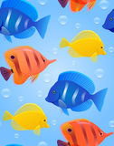 Seamless texture with sea tropical fish and bubbles. Vector bright pattern for wrapping paper, wallpaper and your design Royalty Free Stock Image
