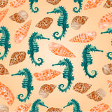 Seamless texture seahorse and seashells  vector Royalty Free Stock Photography