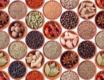 Seamless texture of spices on white Stock Images