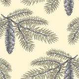 Seamless texture Spruce branch with cone as vintage Vector. Seamless texture Spruce branch with cone as vintage engraving Vector illustration Stock Images